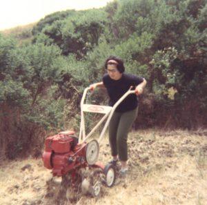woman rototilling her garden in 1969